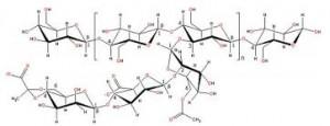 polimericas